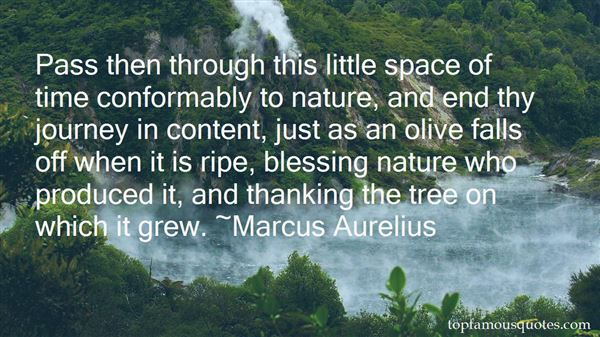 Quotes About Nature Falls