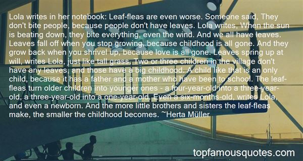 Quotes About Older Brothers And Younger Sisters