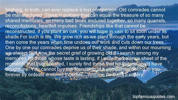 Quotes About Poignant Friendship