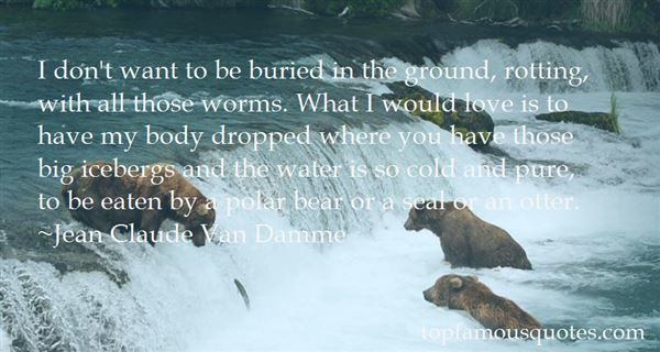 Quotes About Polar Vortex