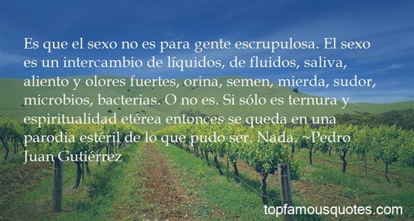 Quotes About Quidos