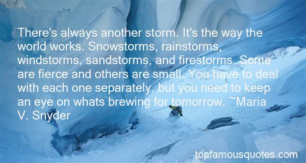 Quotes About Snowstorms