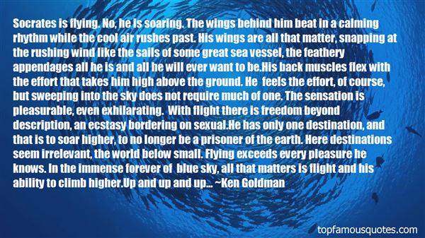 Quotes About Soaring In The Sky
