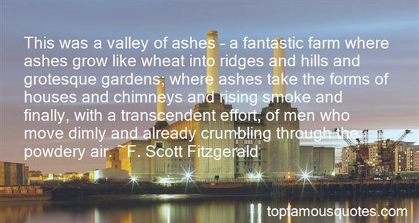 Quotes About The Valley Of Ashes