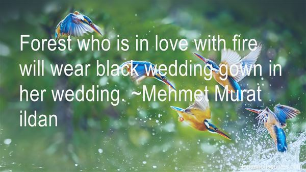 Quotes About Wedding Gown