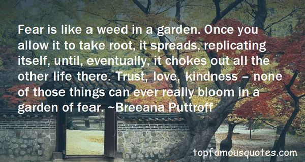 Quotes About Weed Joints