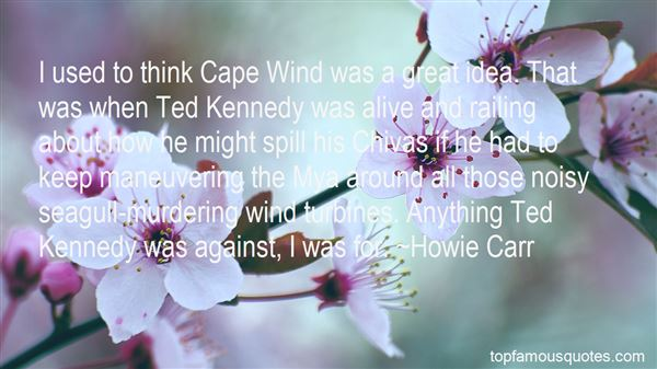 Quotes About Wind Turbines